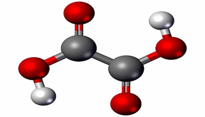 ácido cáprico
