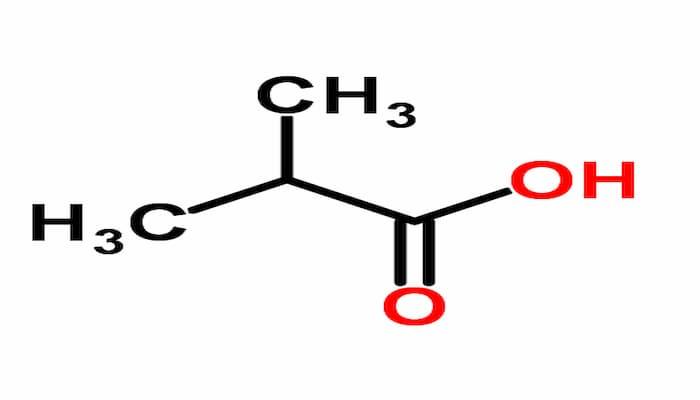 ácido isobutírico